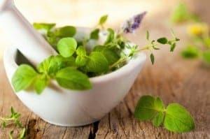 Hajhullás elleni gyógynövények